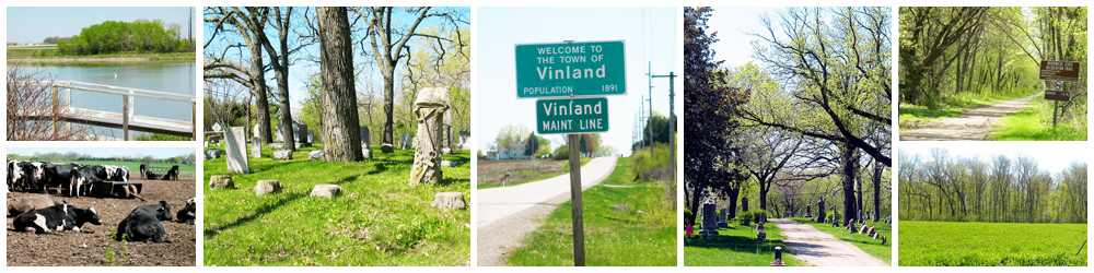 town of vinland collage